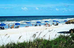 neptune beach singles & personals 34 single family homes for sale in neptune beach fl view pictures of homes, review sales history, and use our detailed filters to find the perfect place.