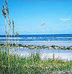 buy ocean front real estate in St Simons Island Georgia